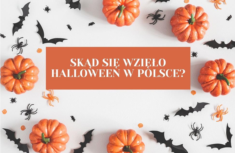 skąd się wzięło halloween w polsce?